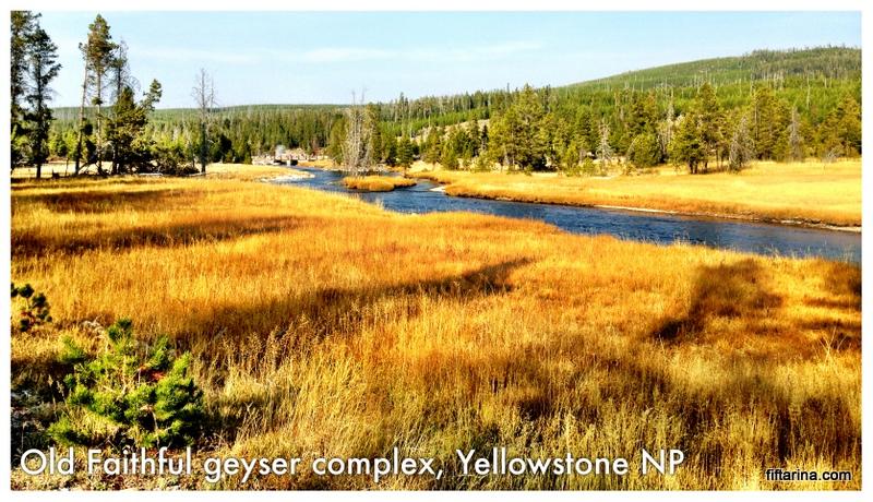 Old Faithful Geyser Complex Yellowstone