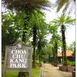 Wandering around Choa Chu Kang Park