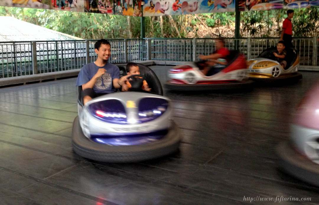bumper_car_fun_with_daddy