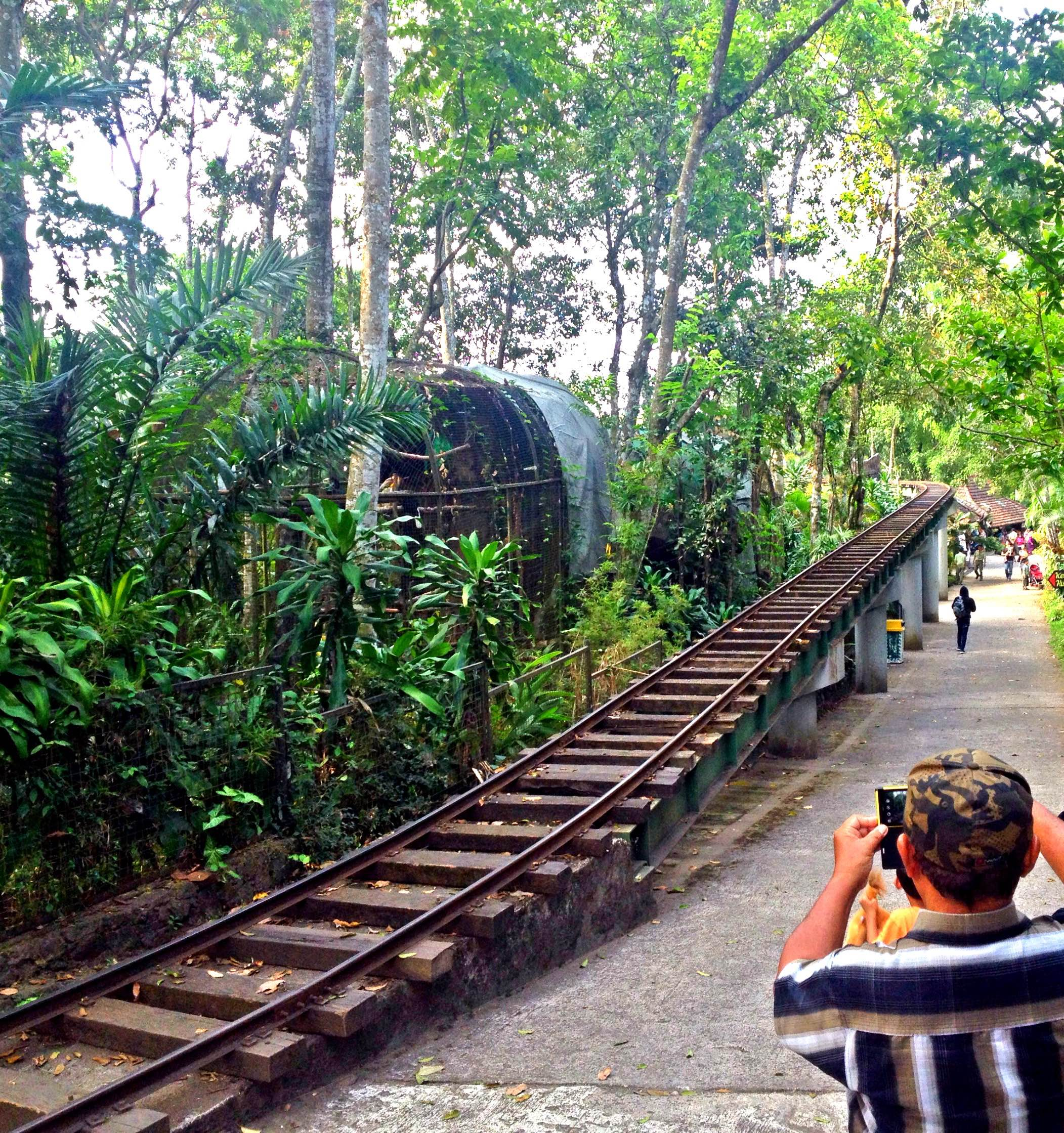 main_path_baby_zoo_taman_safari