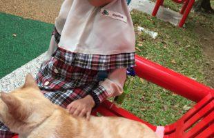Melatih Kemandirian Hari Ke-7: Letak Baju di Keranjang