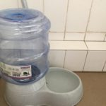 Melatih Kemandirian Hari Ke-3: Mengganti Air Minum
